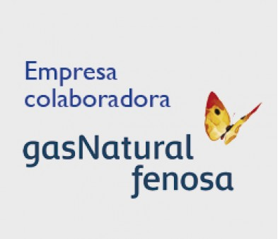 Colaboradores de Gas Natural